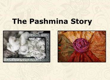 The Pashmina Story