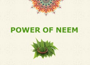 POWER OF NEEM